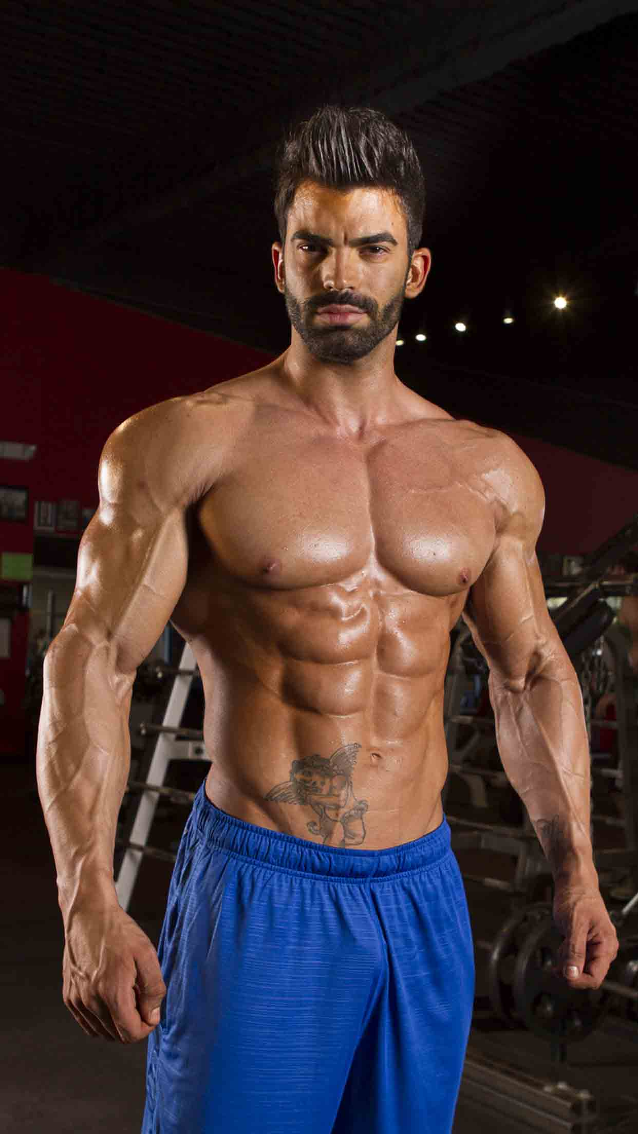 sergi constance workout plans fitplan
